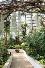 Seoul Botanical Garden (Sunyoung) Tags: zoo spring cityscape korea seoul amusementpark kr southkorea gyeonggido gwacheonsi