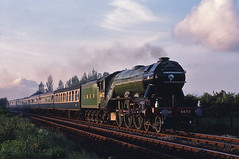 Flying Scotsman on the SSE (Bingley Hall) Tags: york railroad heritage train pacific transport engine rail railway legendary steam transportation 1981 a3 locomotive preservation flyingscotsman 4472 scarboroughspaexpress 462 gresley