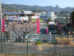 16i5080 (kimagurenote) Tags: apricot ume  japaneseapricot  prunusmume  sogabairin gotembaline    odawarakanagawa shimosogastation