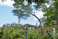 H504_3297 (bandashing) Tags: trees red england people tree green manchester shrine hill crowd foliage sylhet bangladesh socialdocumentary mazar aoa shahjalal bandashing akhtarowaisahmed treecuttingfestival lallalshahjalal