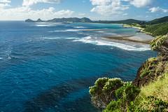 View of northern Lord Howe Island from start of ledge walk under Mt Lidgbird (NettyA) Tags: ocean blue sea water australia hike nsw day6 bushwalk unescoworldheritage lordhoweisland thelagoon 2016 lhi mtgower mtlidgbird bullybush cassiniatenuifolia janetteasche lordhoweforclimate mtgowerclimb