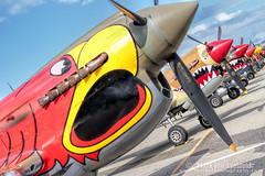 P-40 Line Up (mvonraesfeld) Tags: show plane fighter aircraft aviation air wwii curtiss planesoffame p40 warhawk img8591