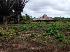 Belize City - Home I (The Popular Consciousness) Tags: belize belizecity centralamerica