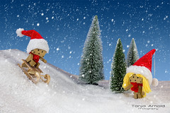 Snow Fun (Tanja Arnold Photography) Tags: schnee snow canon fun toy toys eos amazon figure spielzeug figur schlitten sledging karton spas danbo revoltech danboard danboru 5dmkiii kartonmnnchen danb tanjaarnold tanjaarnoldphotography danbru
