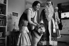 Scan-160101-0029 (Oleg Green (lost)) Tags: new blackandwhite bw dog film home 35mm children husky voigtlander year rangefinder 400 holydays rf hexar 1735 fomapan ultron