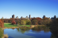 Central Park - Turtle Pond (carlos_seo) Tags: usa newyork us unitedstates centralpark turtlepond 2015