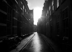 Oude Molstraat (Patrick Rasenberg) Tags: street holland netherlands europa europe nederland denhaag sombre thehague tegenlicht straat