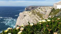 View from Phare de Beliche (daniel EGV) Tags: ocean sea mer beach portugal water seaside sable cliffs atlantic algarve plage sans falaises beliche altantique