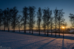 Schattenmalerei (Rainer M. Ritz) Tags: schnee nikon sonnenuntergang herrenberg shilouette lichtundschatten wwwrainerritzde rainerritzfotografie fotos2016