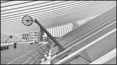 Station Lige-Guillemins, (<<<< peter ijdema >>>>) Tags: luikguillemins stationligeguillemins