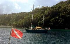 A visitor from cooler climes (oobwoodman) Tags: sailboat yacht flag scuba diving canadian caribbean stlucia segelboot voilier carabes marigotbay westindies karibik saintlucia jacht