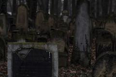 graves (juiceSoup) Tags: krakow