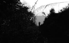 Pandeli (GrainyDayCollective) Tags: leica nepal blackandwhite film analog 35mm photography blog asia ishootfilm countries cameras analogue pokhara m6 analogphotography 35mmphotography continents sarangkot leicam6 filmphotography adox filmsnotdead silvermax buyfilmnotmegapixels adoxsilvermax
