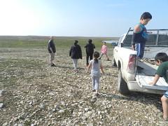 Going swimming at Long Point August 2015 03 (cambridgebayweather) Tags: swimming nunavut cambridgebay arcticocean