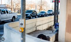 The commute (djericray) Tags: streets sad homeless poor streetphotography shelter heartbroken nikkor50mm18d nikond750