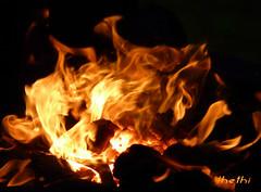 151213 ffN 160125  Ththi ( 4 pics ) (thethi: pls read the 1st comment) Tags: tre feu flamme chaleur chauffage dcembre namur wallonie belgique belgium setnamurcity setvosfavorites provincenamur albumdcembre ruby10 bestof2015 faves59