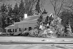Day After Storm Jonas 16  - Snow House 1 (George - with over 2 mil views - THANKS) Tags: winter usa snow monochrome us blackwhite newjersey unitedstatesofamerica snowstorm january mercercounty ewing winterscene acdseepro suburbanscene photogeorge nikond750