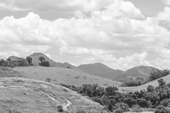 Esprito Santo Landscape (Andre Zuin) Tags: travel trees brazil sky bw plants nature monochrome clouds landscape plantas natureza pb paisagem viagem nuvens arvores ceu montanhas montains