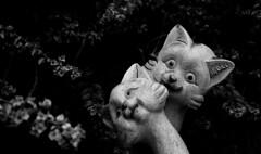Love Cats (kieronjameslong) Tags: sculpture cats art love public statue sarawak malaysia borneo civic felines kuching