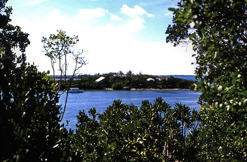 "Bahamas 1989 (461) Abaco: Elbow Cay • <a style=""font-size:0.8em;"" href=""http://www.flickr.com/photos/69570948@N04/24826564411/"" target=""_blank"">View on Flickr</a>"