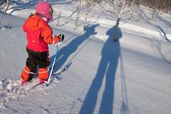Long shadows - skiing with my grand-daughter (harald.bohn) Tags: winter vinter shadows skitur skiers longshadows skygger langeskygger nysnø skiløpere
