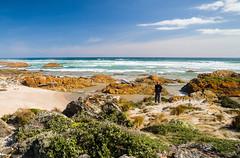 Arthur River (laurie.g.w) Tags: ocean water river coast arthur rocks shoreline australia tasmania coastline headland sescape