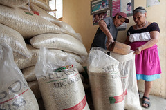 VENTA DE MAZ (diconsa_mx) Tags: tienda venta hidalgo maz comunitaria diconsa