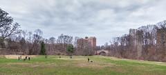 Wyman Park (Julian Spath) Tags: park winter dog nature woof landscape daylight spring baltimore again bark end hampden grr sprung hopkins wyman wymamn
