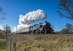Whiskey Trail (4486Merlin) Tags: england southwest europe unitedkingdom transport somerset steam signals railways westcountry gbr bishopslydeard westsomersetrailway heritagerailways exbr brstd4mt264t 50thanniversaryclosureoftheline 8004380072 sd50thclosureanniversary