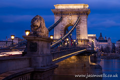 Pretty lights on Chain Bridge (wellsie82) Tags: city bridge blue urban water statue skyline night river dark outside outdoors twilight europe hungary nocturnal budapest lion landmark lionstatue bluehour iconic danube easterneurope danuberiver nightfall lightstreaks traffictrails chainbridge centraleurope