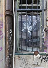 Man of Darkness 2016-04-10 (6D_1242) (ajhaysom) Tags: streetart graffiti australia melbourne canon1635l canoneos6d manofdarkness
