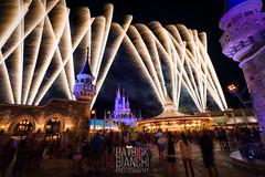 A Wish For Love (patchrick84) Tags: longexposure florida fireworks wishes waltdisneyworld themepark magickingdom behindthecastle backofthecastle