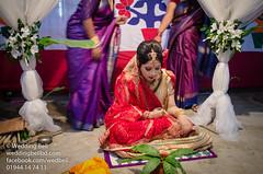 Wedding Bell-64 (weddingbellbd.com) Tags: birthday blue b wedding light portrait woman white fruits monochrome beauty silhouette lady female umbrella happy photography bride dance df couple pretty child bell bokeh details w prayer decoration hijab lips follow reception desi portraiture d750 backlit dhaka split bridal process mehendi decor hindu softbox bangladesh bnw rakhi postwedding strobe facebook bangles efes holud bangladeshi walima dhanmondi d610 gulshan hejab mehedi twitter deshi bonani weddingbell akht d7000 sb700 backlilght d5100 ceremonyweddingbell
