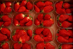 fraises / strawberries (assis sur le rebord du monde...) Tags: world food green fruits canon plante rouge desert weekend marathon strawberries montpellier march plaisir nourriture dimanche lgumes matin baie fraises doux 70d