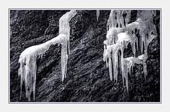 - File1225 (Ferruccio Jochler) Tags: winter gelo ghiaccio stalattiti