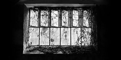 urban decay 4057 (s.alt) Tags: bw plant abandoned broken window glass germany blackwhite closed factory decay urbandecay fabrik sw schwarzweiss industrie halle