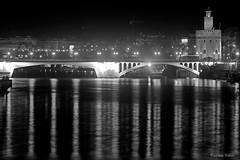 Reflejos de San Telmo (Retratista de paisajes y paisanajes) Tags: bridge puente sevilla spain andalucia santelmo torredeloro rioguadalquivir