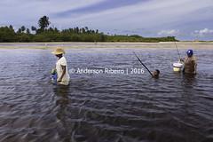 Pescaria | Fishing (AndersonRibeiro_2015) Tags: brazil praia beach brasil fisherman workers fishermen mangrove pernambuco pescador pescadores mangue
