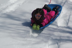 Jovie sledding on the frozen lake (Aggiewelshes) Tags: travel winter snow april snowshoeing wyoming sled jacksonhole colterbay jovie grandtetonnationalpark 2016 gtnp