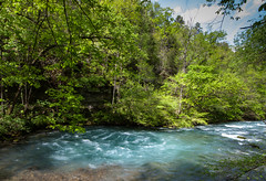 Greer Spring Upwelling (Bob Patton) Tags: nature missouri springs rivers streams creeks greerspring missourisprings missouriparks