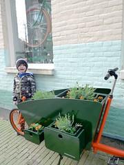WorkCycles-Bloemenbakfiets-3 (@WorkCycles) Tags: flowers orange plants dutch amsterdam bike groen planter grachten bloemen lijnbaansgracht cargobike bakfiets bakfietsen goudsbloemstraat workcycles kr8