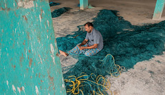 Mending nets (1/4th) Tags: street india colour nikon repair d750 nikkor chennai tamilnadu mend fishingnet cwc mendingnets  royapuram kasimedu  2470mmf28g nikon2470mmf28 mendingfishingnets chennaiweekendclickers royapuramfishingharbour kasimedufishingharbour  kasimeduharbour cwc526