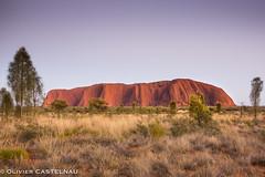 Uluru 2- (Oliflyer) Tags: rock sunrise couleurs australia ciel uluru australie ayersrock aube