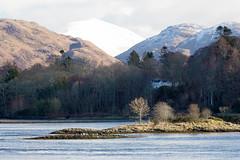 Loch Etive (Graham Cameron Himself) Tags: sea house mountain sunshine landscape island scotland seaside rocks peaceful oban lochetive scottishloch