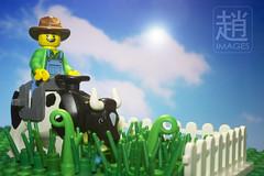 Lawn Mooer (mikechiu86) Tags: brick grass fence cow ride lego lawn plate farmer mower collectible base minifigure yokel mooer