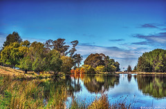 Breathing space (Kevin_Jeffries) Tags: trees newzealand lake reflection nature water reflections river mirror interestingness still interesting pond flickr peaceful canterbury stillness kevinjeffries