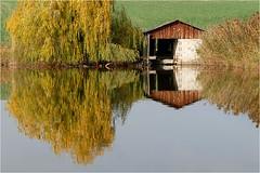 Herbst am Teich 37 (lady_sunshine_photos) Tags: austria weide europa herbst teich niedersterreich bootshaus oase weinviertel herbstfrbung nexing