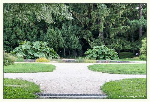 HBV - Botanischer Garten Univ. Wien | 2015-08