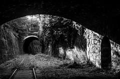 Petite ceinture 2 (charles.enchine) Tags: street urban streetart paris tag railway tunnel urbanexploration urbanjungle exploration urbex abbandonned