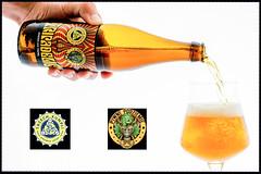 DSC_6401p (vermut22) Tags: beer bottle beers brewery birra piwo biere beerme beertime browar butelka